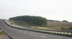 С 1 августа оплату за проезд по автодорогам Беларуси будут взимать с помощью электронной системы