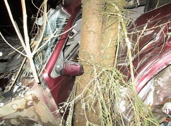 В Воложинском районе Пежо вылетел в кювет - водителя зажало в салоне