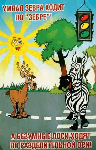 пешеходный, переход, зебра