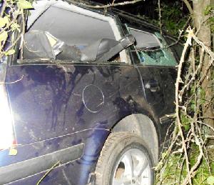 В Гомельской области Volkswagen вылетел в кювет и врезался в дерево