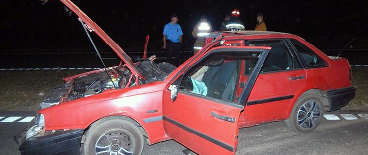 В Слуцком районе Volvo совершил наезд на лося: два человека погибло
