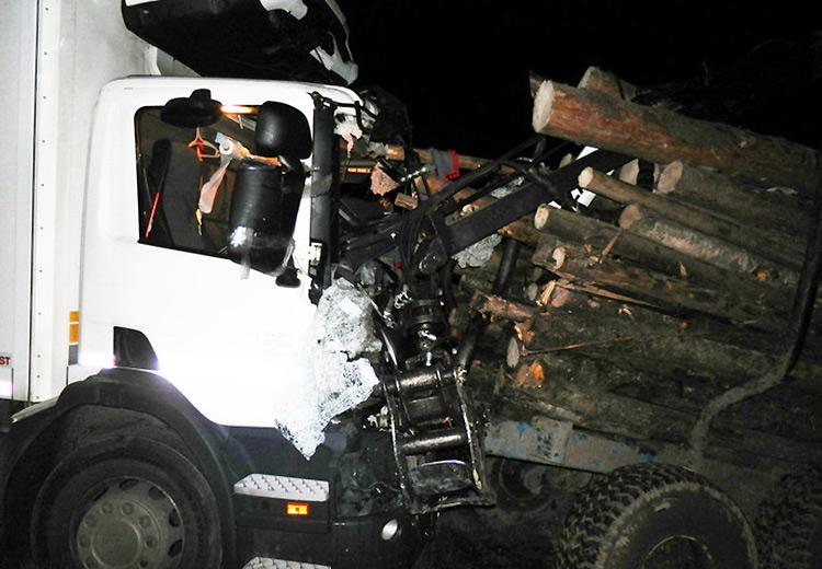 Грузовик Scania врезался в прицеп с бревнами