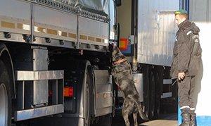 Колонну белорусских грузовиков задержали на российской границе