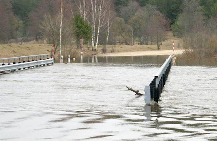 В Могилевской области река затопила мост и часть дороги