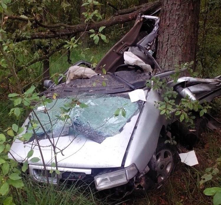 В Житковичском районе Seat вылетел в кювет: водитель погиб