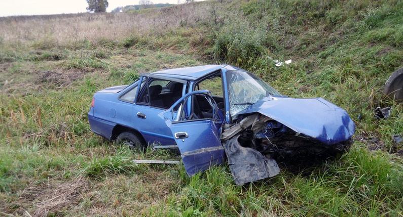 В Бобруйском районе в результате ДТП погиб ребенок