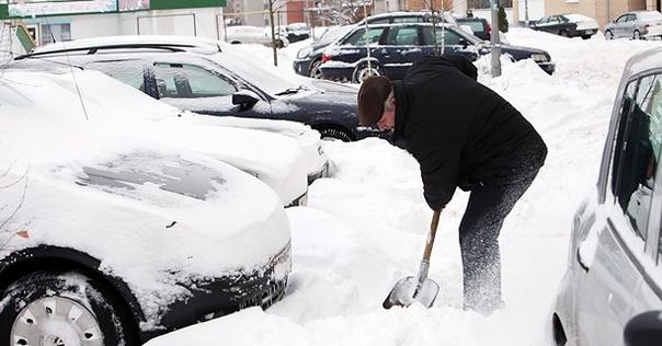 Столичных автовладельцев обязали убирать возле своих машин