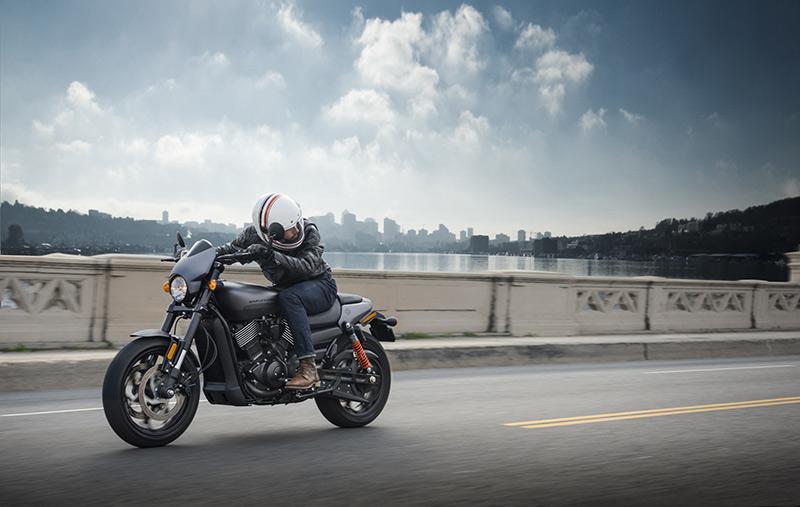 Новый Harley-Davidson Street Rod: мускулистый боец