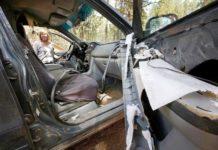 Медведь-слестена залез в автомобиль, а выбраться не смог