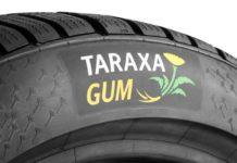 Концерн Continental расширяет проект «Taraxagum» по изготовлению шин из одуванчиков