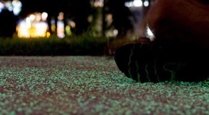 В Сингапуре построили светящуюся дорогу