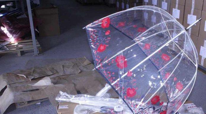 Сотрудники Гродненской региональной таможни задержали 15 тыс. единиц пар обуви и зонтов