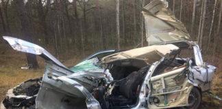 В Гомельской области в ДТП погибла семья с 3-летним ребенком