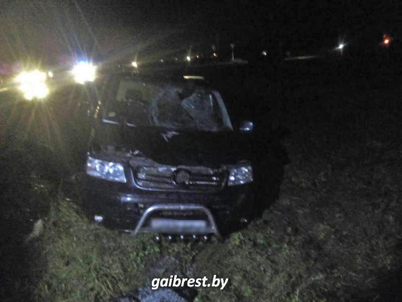 В Брестской области VW насмерть сбил велосипедиста