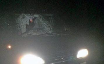 В Брестской области под колесами Citroen погиб пенсионер