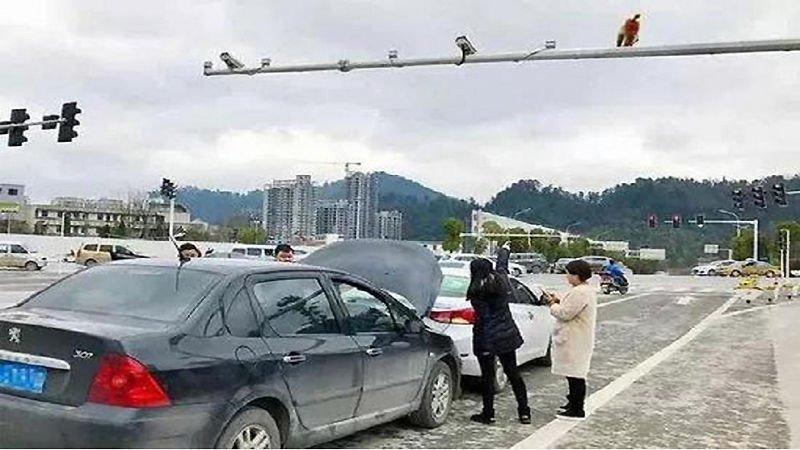 ДТП в Китае: водитель перепутала зад обезьяны со светофором