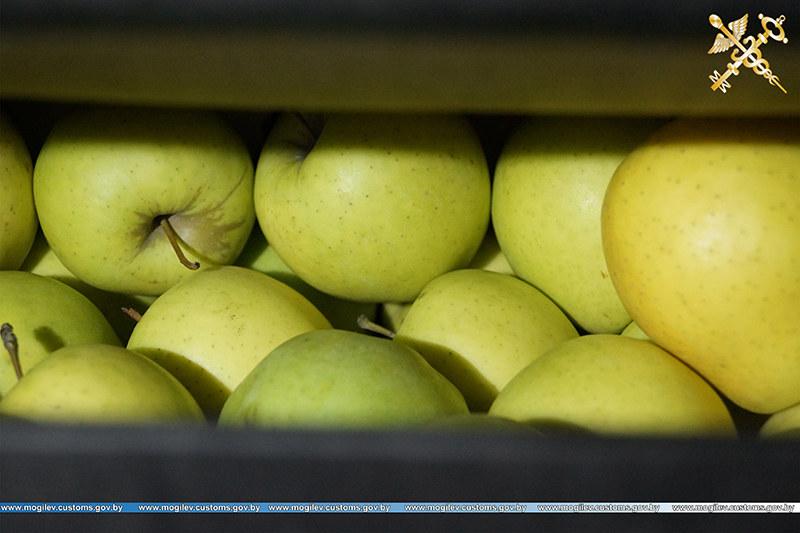 Таможня пресекла перемещение яблок без фитосанитарных сертификатов