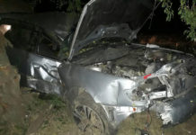 В Брестском районе Audi снесла забор и врезалась в дерево