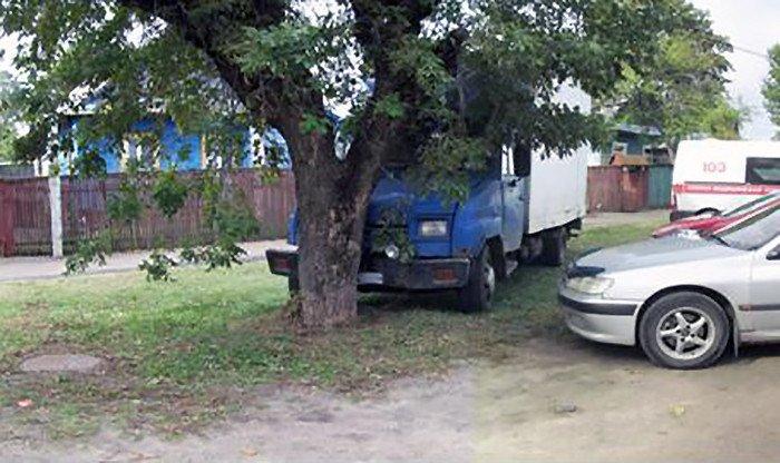 Смертельный наезд на пешехода произошел в Борисове