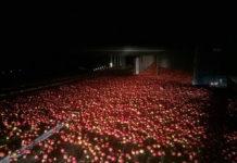 В Барановичском районе опрокинулась фура с яблоками