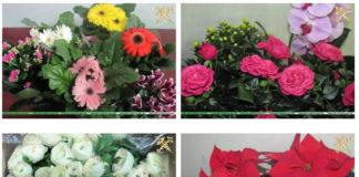 перемещение цветочной продукции