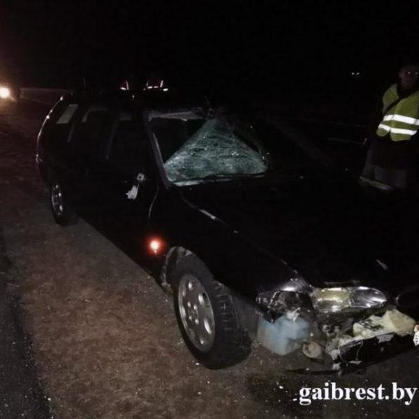В Кобринском районе Ford Mondeo сбил пешехода