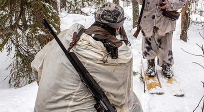 В Приморье (Россия) инспектор охотнадзора преследовал полицейских