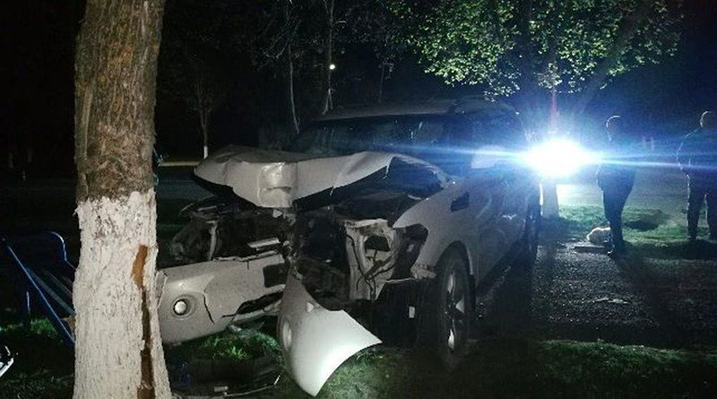 В Витебской области легковой автомобиль влетел в дерево