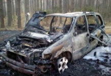 Пока водитель тушил траву, огонь добрался до его автомобиля