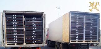 Более 70 тонн яблок пытались незаконно вывезти из Беларуси в апреле