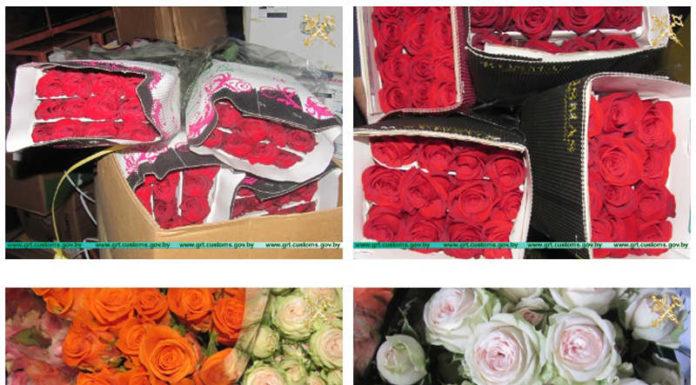 500 тысяч цветов пытались незаконно ввезти с начала года