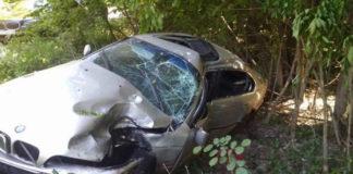 В Столинском районе несовершеннолетняя бесправница въехала в дерево