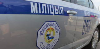Автоинспекторы со стрельбой остановили пьяного водителя