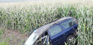 Пьяный водитель на угнанном автомобиле вылетел в кювет и сбежал с места ДТП