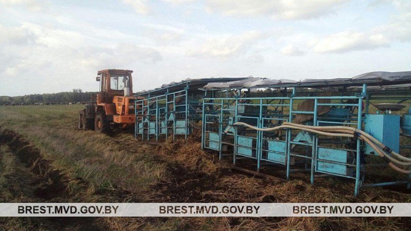 В Дятловском районе погиб бесправник, а под Ивацевичами тракторист насмерть задавил животновода.