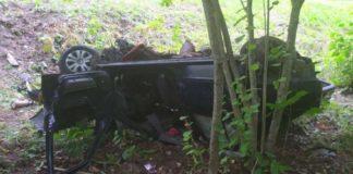 В Белыничском районе пьяный водитель врезался в дерево