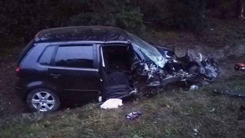 Женщина-водитель уснула за рулем и врезалась в дерево.