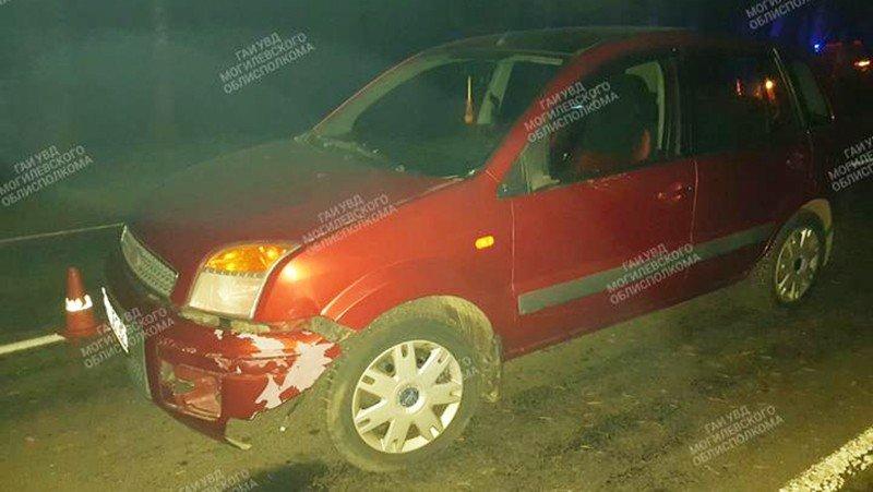 В Ельске пьяный водитель врезался в дерево, а под Могилевом сбита пьяная пешеход