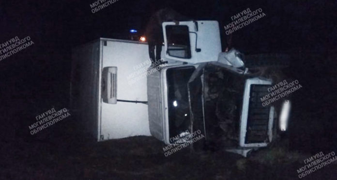 Под Быховом гужевая повозка столкнулась с грузовиком