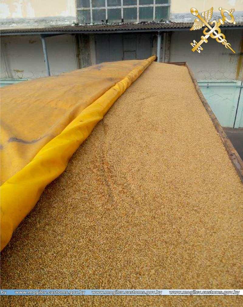 30 тонн зерна