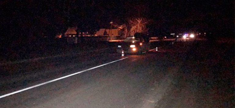 В Оршанском районе легковушка насмерть сбила пешехода
