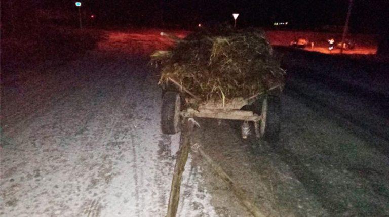 В Рогачевском районе легковушка съехала в кювет и опрокинулась