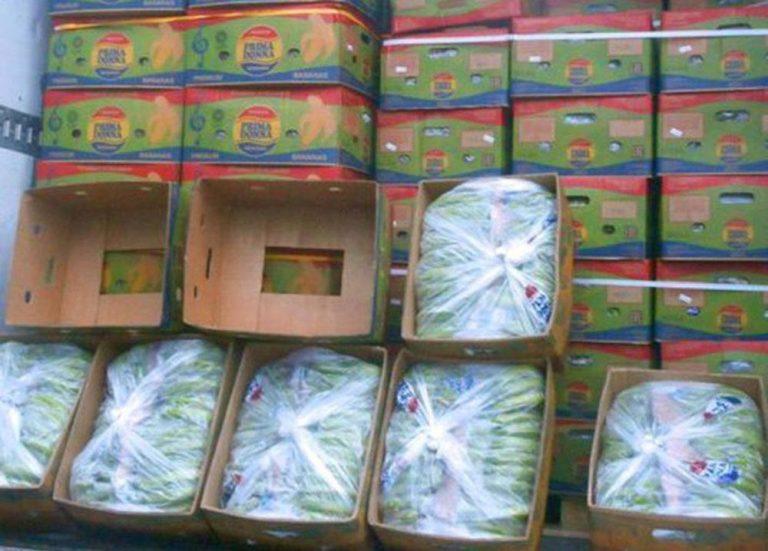 Предотвращен ввоз из России в Беларусь более 100 тонн продукции без сертификатов безопасности