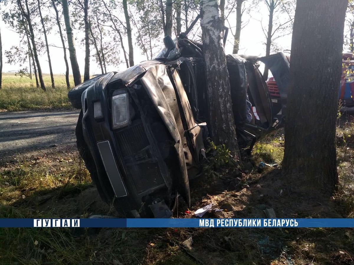Audi врезался в дерево