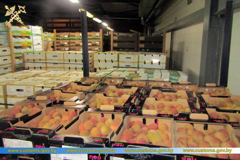незаконный ввоз фруктов