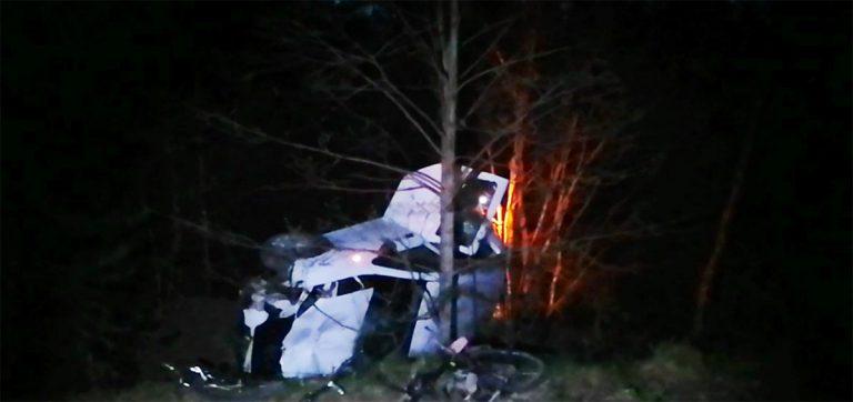 в Городокском районе погиб велосипедист