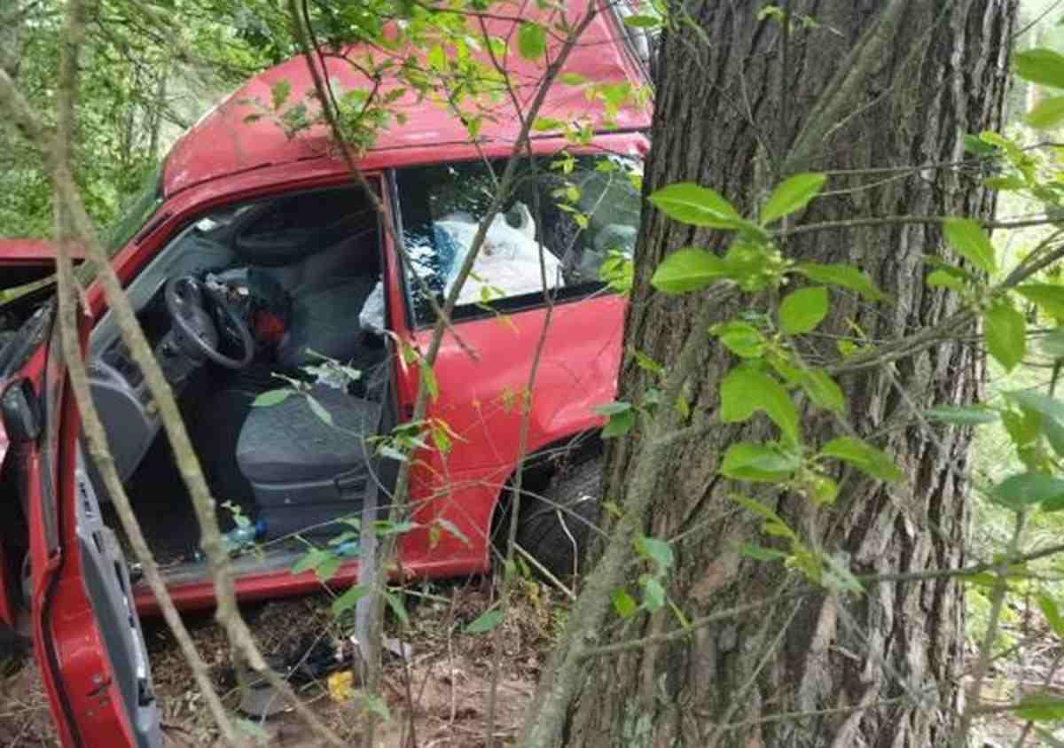 погиб водитель Suzuki