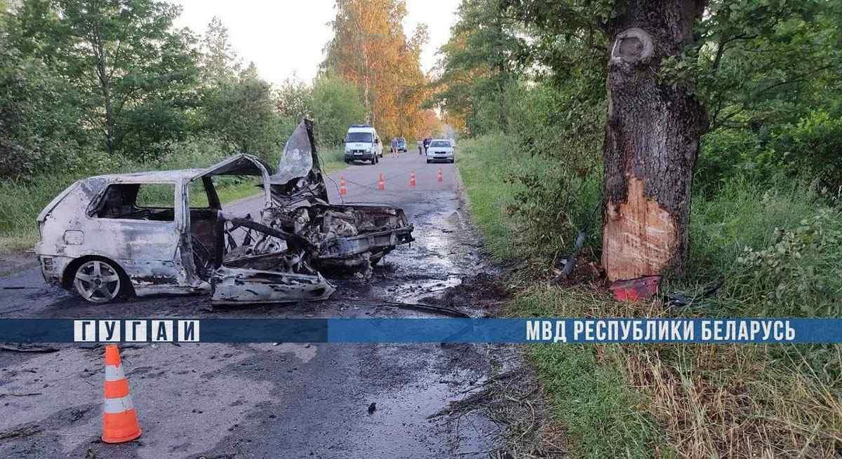 смертельное ДТП в Калинковичском районе
