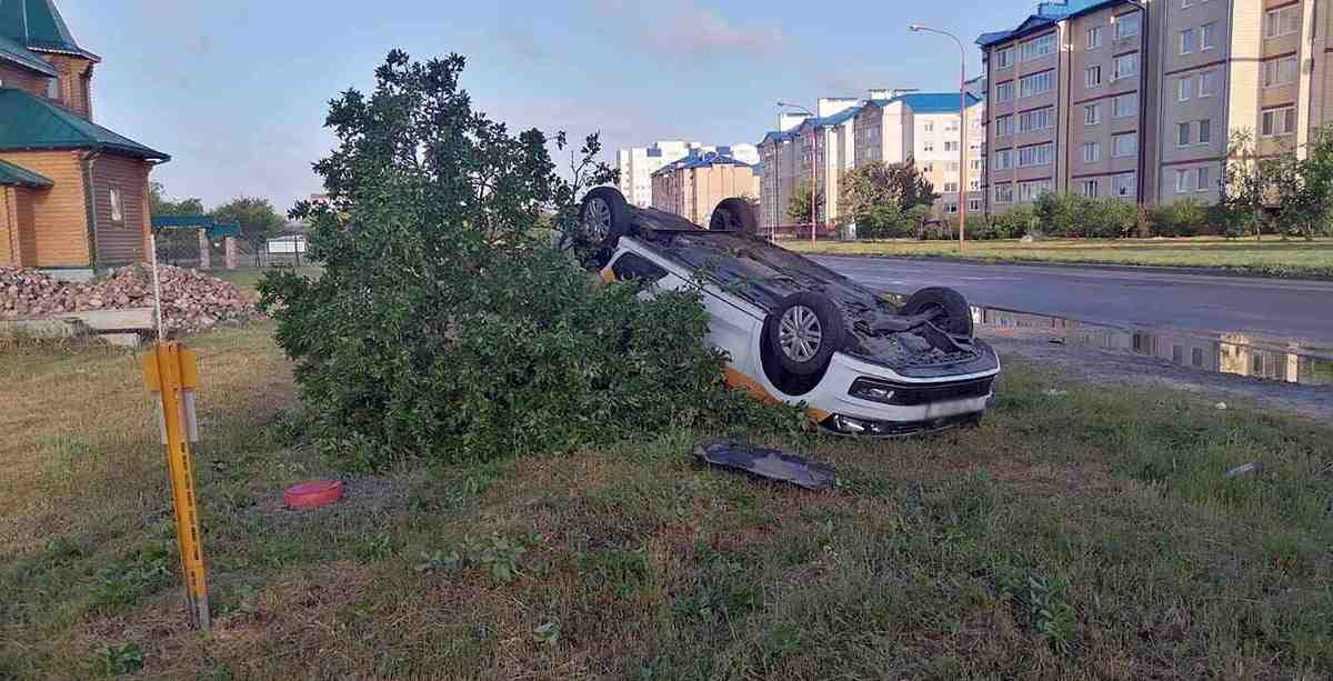 автомобиль-такси сломал придорожное дерево