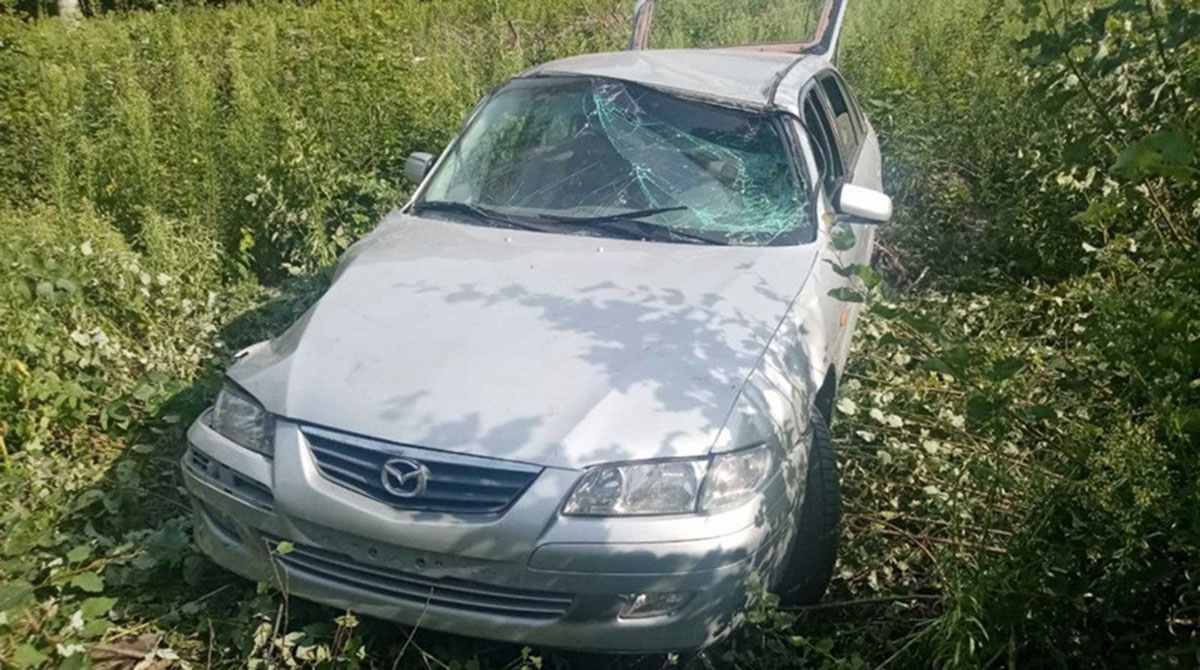 Mazda столкнулся с лосем